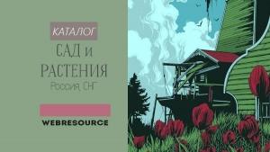Оригинальные советы огороднику. часть 4 / асиенда.ру