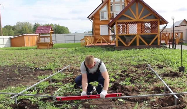 Как правильно расположить растения в теплице