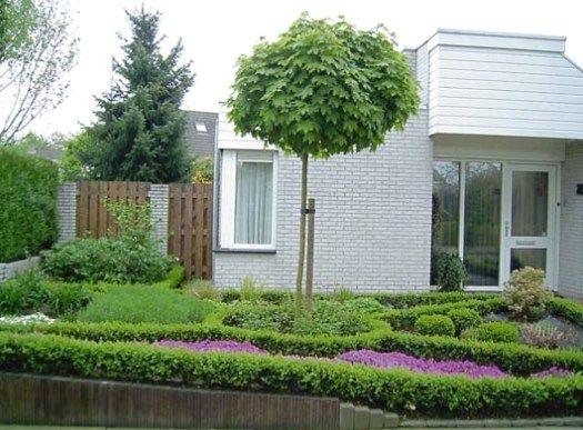 Дизайн палисадника перед домом +75 фото украшения своими руками