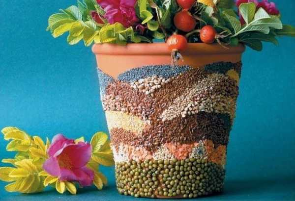 Как выбрать цветочные горшки?
