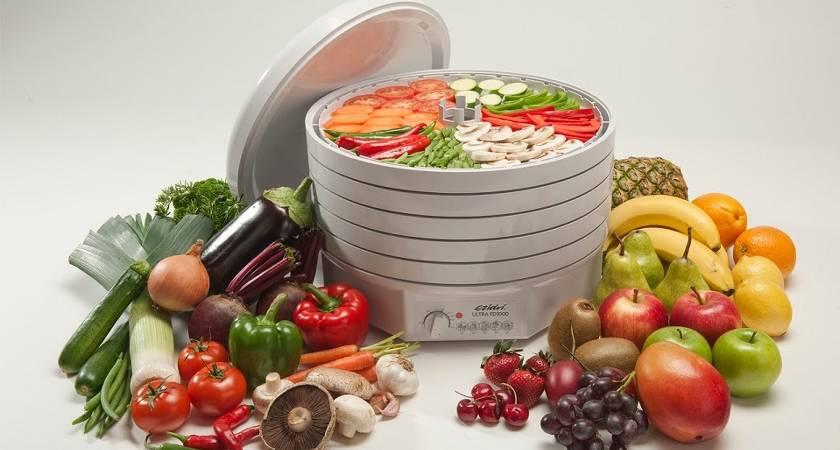 Грамотный выбор сушилки для овощей и фруктов