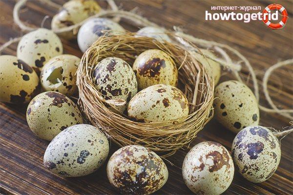 Польза перепелиных яиц - 5 преимуществ