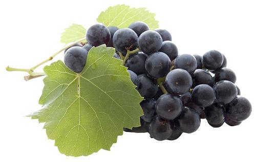 Зачем разбавлять с водой вино из винограда и 4 лучших рецепта приготовления в домашних условиях