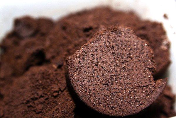 Кофейная гуща как бюджетное удобрение для растений