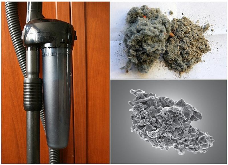 """Откуда берется пыль в квартире? — журнал """"рутвет"""""""