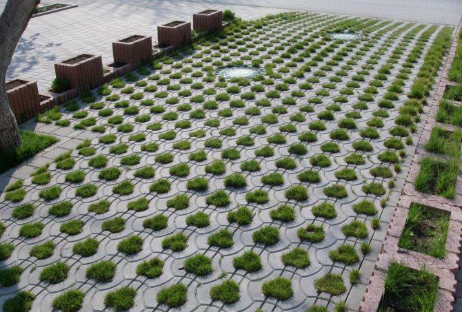Покрытие для садовых дорожек на даче: 9 самых популярных материалов – их характеристики и цены