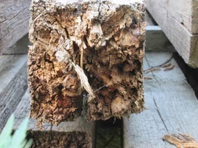отбеливатель для древесины какой лучше выбрать