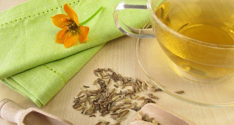 Чем полезны семена фенхеля и как их применять правильно?