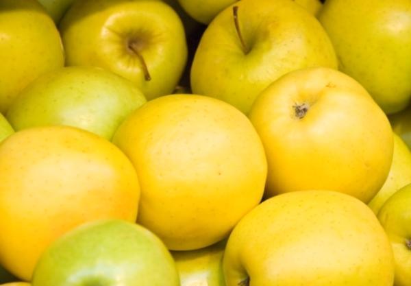 Яблоня ред делишес: описание сорта, фото, отзывы, калорийность