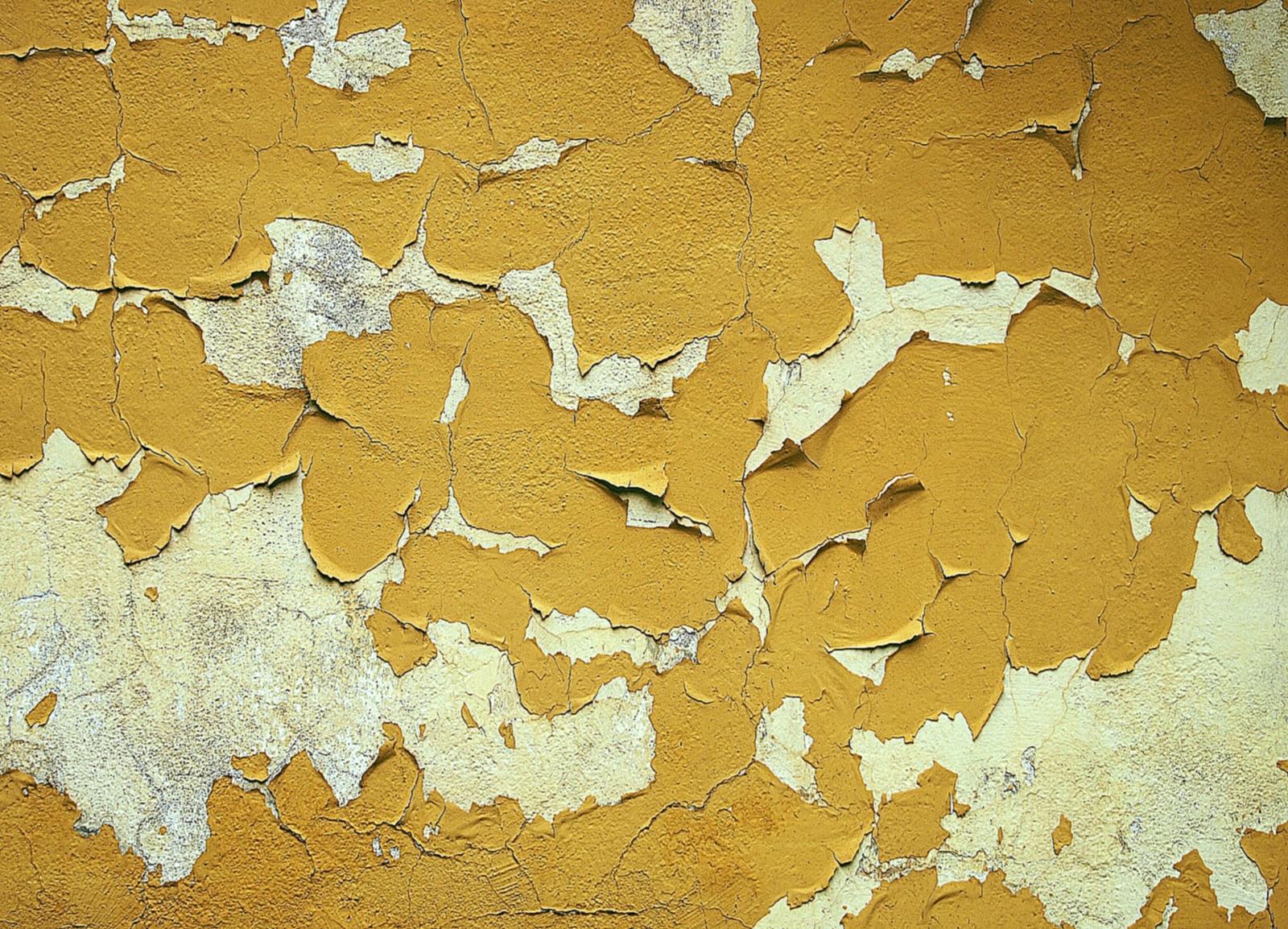 4 быстрых и надежных способа снять со стен старую масляную краску: 40 фото и 2 видео
