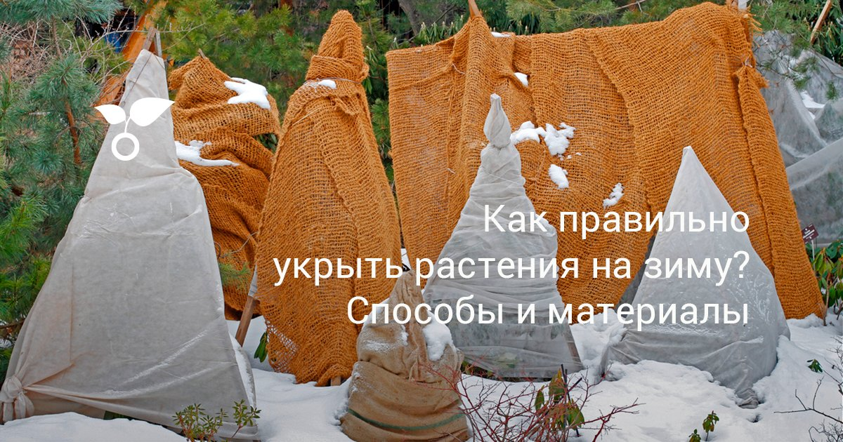 Как правильно укрыть растения на зиму? способы и материалы. фото — ботаничка.ru