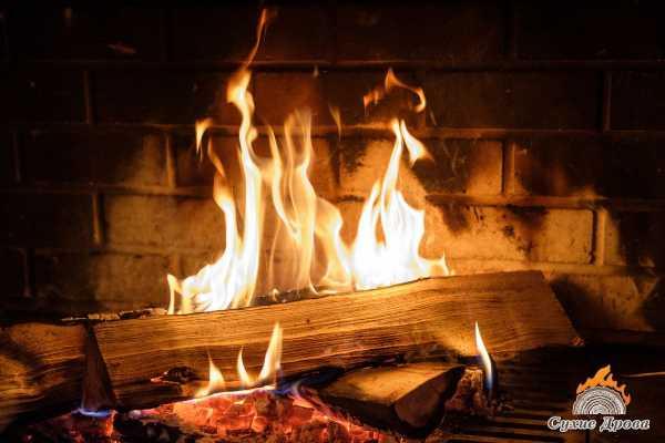 Какие дрова купить для дачи? породы дерева и отопление дровами