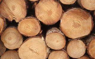 дерево материал