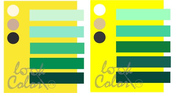 какие цвета сочетаются