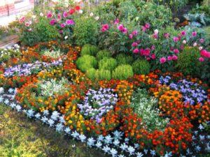 Как начинающим сделать своими руками красивые клумбы на даче из многолетников: виды и фото цветников