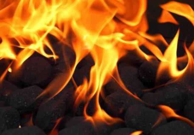 Уголь: классификация, виды, марки, характеристика, особенности горения, места добычи, применение и значение для экономики