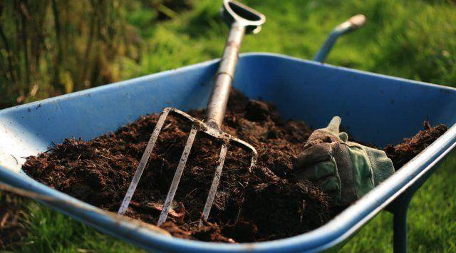 подкормка малины осенью удобрениями сроки