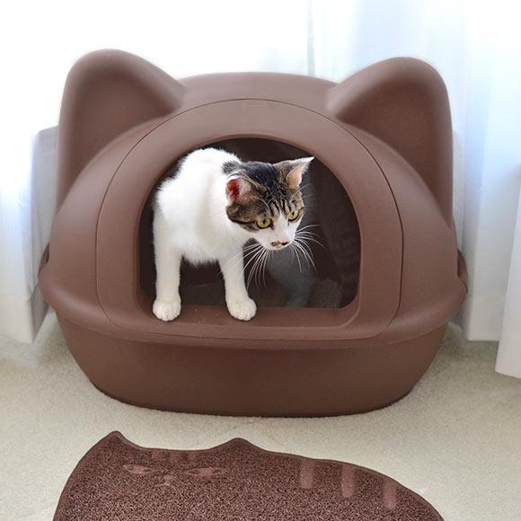Лоток для кошек с решеткой: как правильно использовать, надо ли насыпать наполнитель?