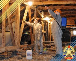 Огнезащита деревянных конструкций: варианты обработки