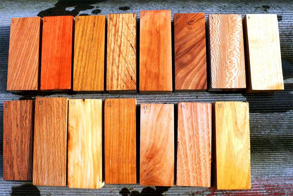 Особенности древесины бука
