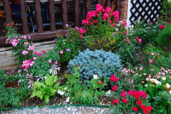 Ландшафтный дизайн сада перед домом, красивый палисадник, идеи оформления, фото