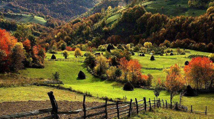 Плюсы и минусы деревенской жизни
