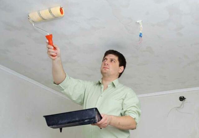 Грунтовка под водоэмульсионную краску для стен и потолков – особенности, выбор и виды