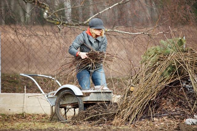 Шпаргалка для садоводов: дачные хитрости от а до я