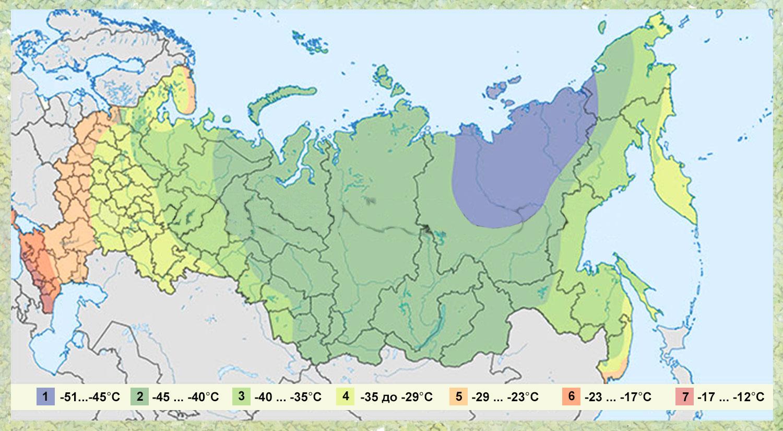 Зоны морозостойкости растений — какие бывают и зачем их знать? карта и таблица зон usda. фото — ботаничка.ru