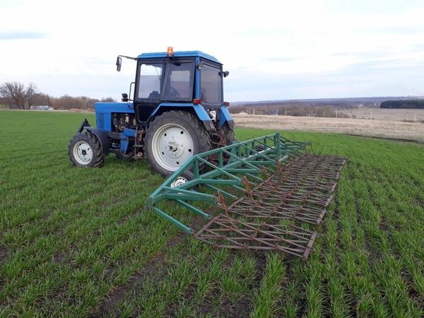 Fermer.ru - фермер.ру - главный фермерский портал - все о бизнесе в сельском хозяйстве. форум фермеров.